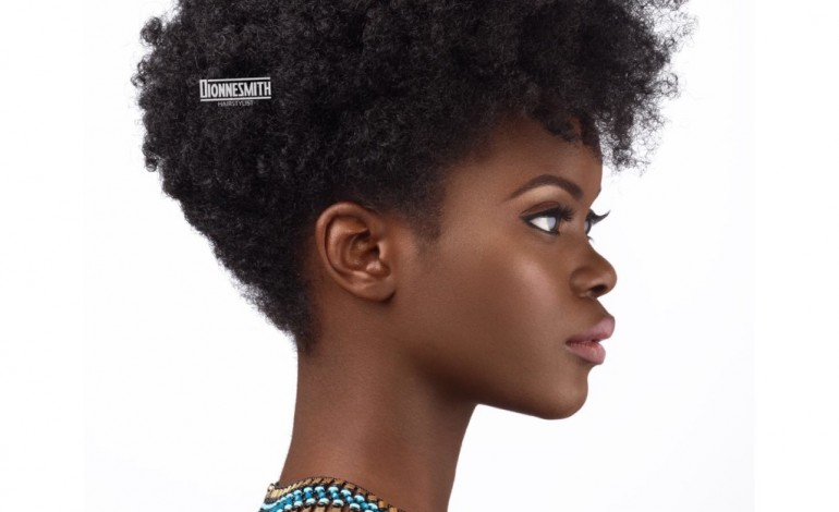 These 4 Photos Shows African Hair is The Best