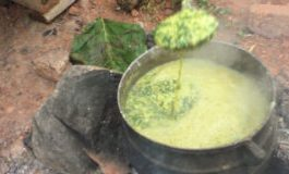 How To Cook Ilasa - Nigerians Believe This Soup Helps in Conceiving Twins