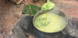 How To Cook Ilasa – Nigerians Believe This Soup Helps in Conceiving Twins